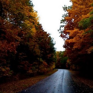 5 Tips for Planning a Road Trip in the Fall