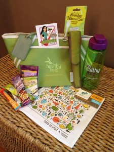 Healthy Voyager Healthy, Vegan and Eco-Friendly Travel Kits Base Model