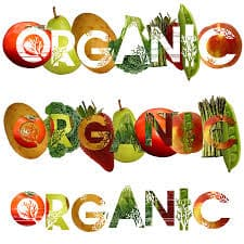 Organic and inorganic food essays