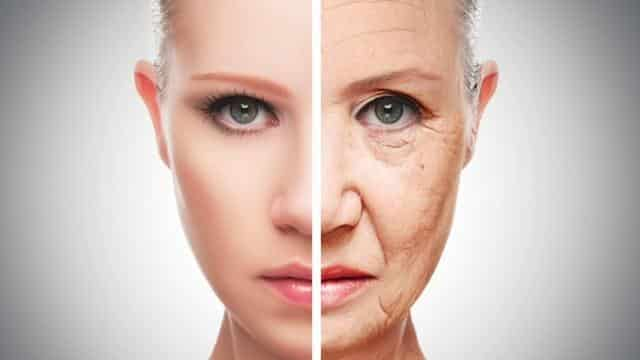 What Is The Right Diet To Fight Aging And Wrinkles?