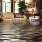 Water Damage and Your Home: Understanding the Causes and Prevention