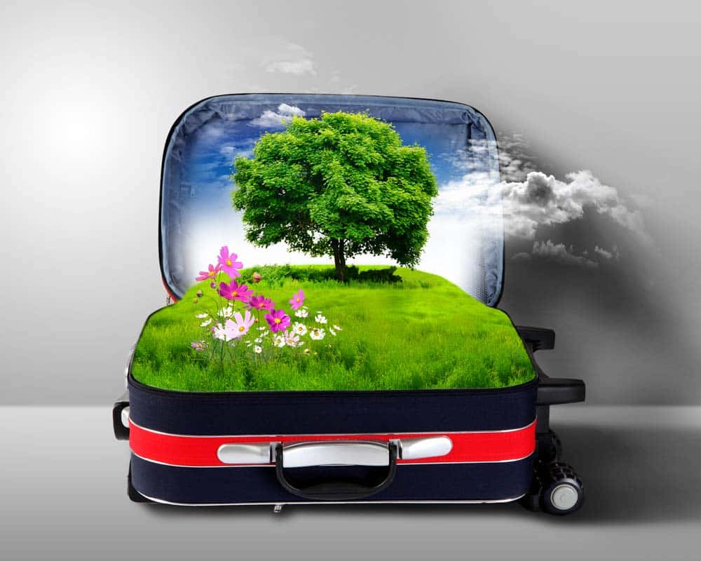 4 Tips For Going Green While You Travel