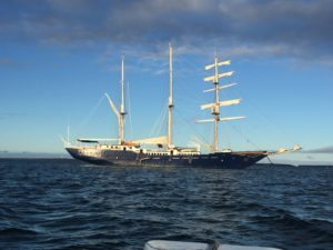 ss maryanne andando tours galapagos