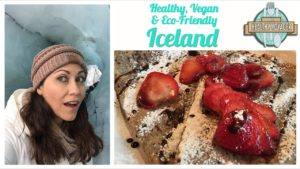 iceland healthy voyager