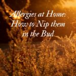 Allergies at Home: How to Nip them in the Bud