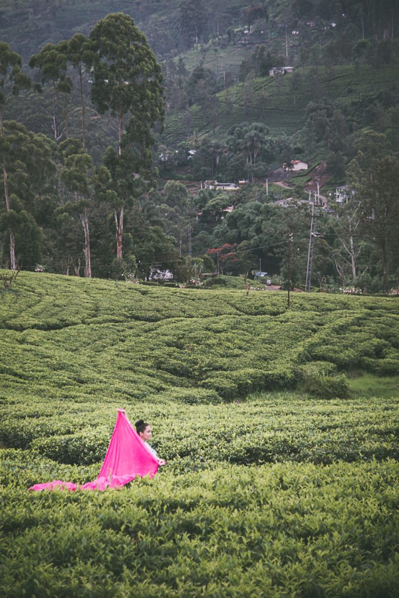 hatton tea plantation sri lanka