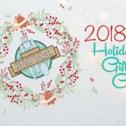 2018 Healthy Voyager Holiday Gift Guide