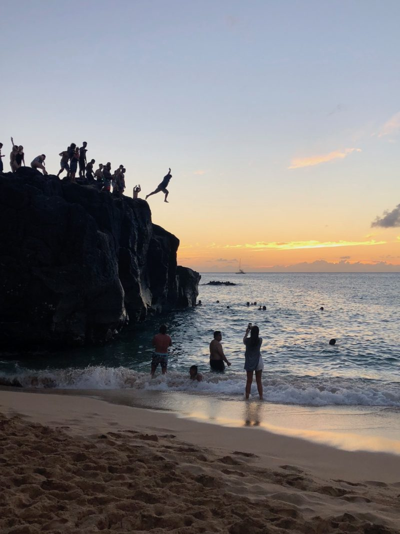 waimea bay healthy voyager