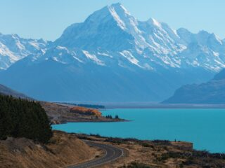 Visiting New Zealand? 4 Experiences to Add to Your Bucket List