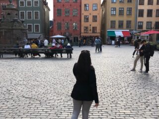 stockholm-gamla stan healthy voyager
