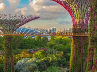 Create A Memorable Experience When You Travel To Singapore