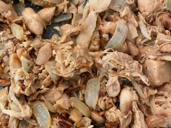 vegan-mojo-shredded-pork