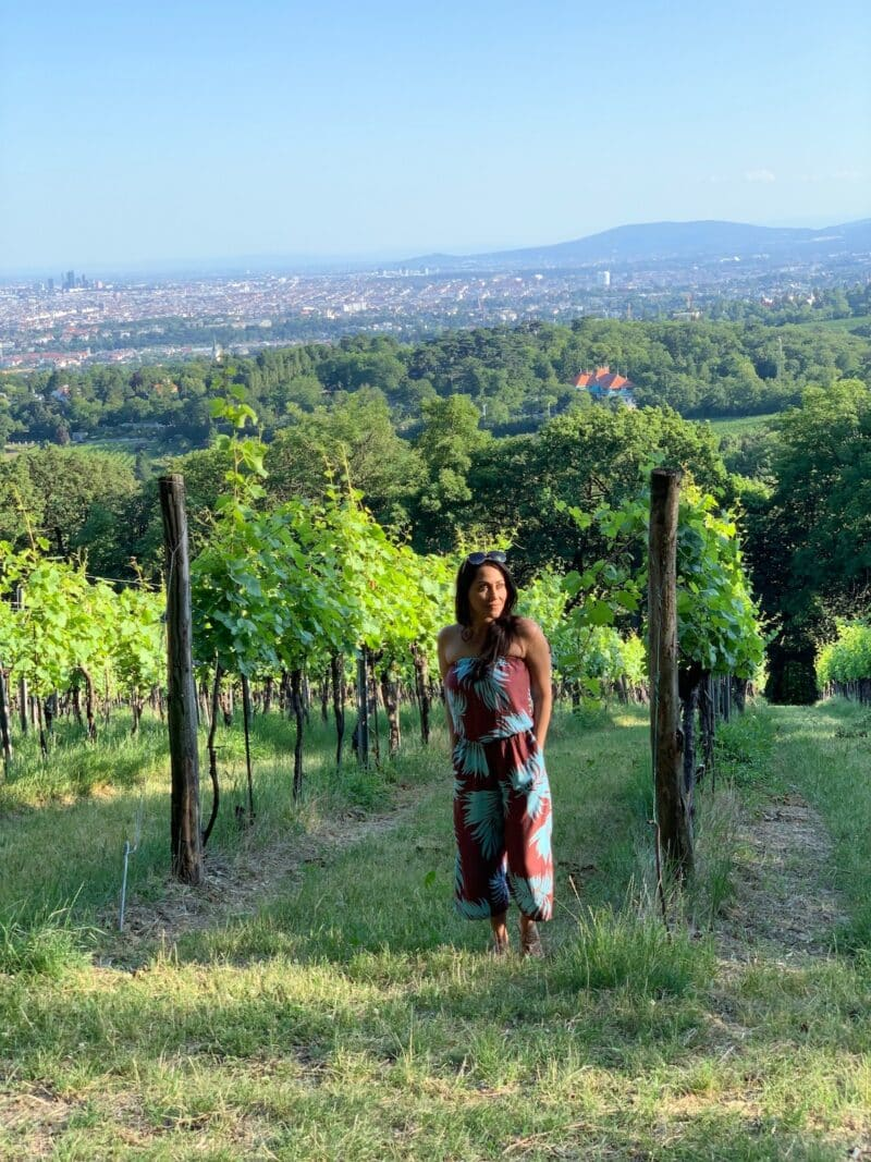 vienna-vineyard-healthy-voyager