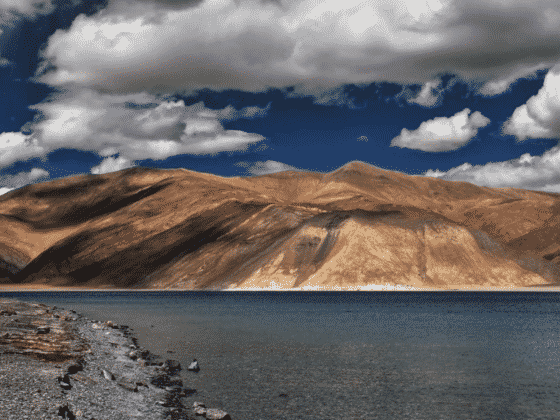 Best Things to Do in Leh and Ladakh