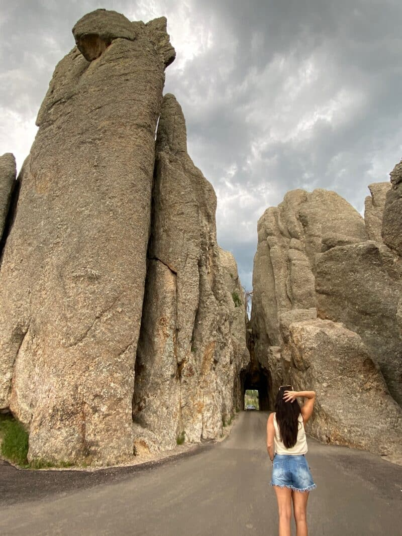 needles-highway-south-dakota-healthy-voyager