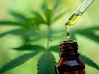 5 Reasons Why People Are Turning To CBD